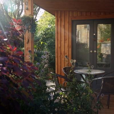Larch Studio Deck Foliage - Tom Foottit Contemporary Carpentry